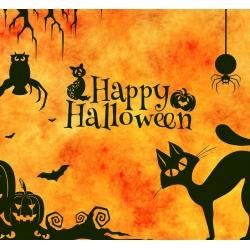 МЕГА SALE на Хеллоуин с 27.10 по 31.10!